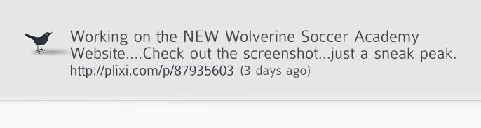 Wolverine Soccer Academy Dot Com